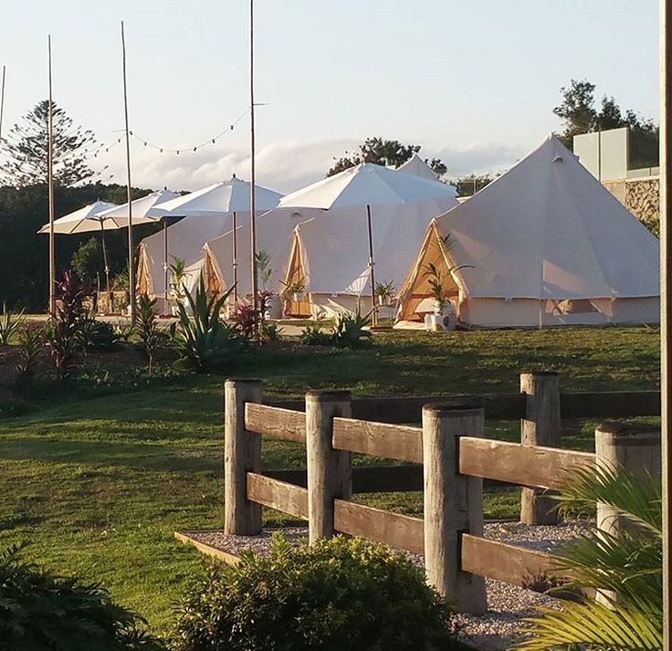Glamping - The Grove Byron Bay