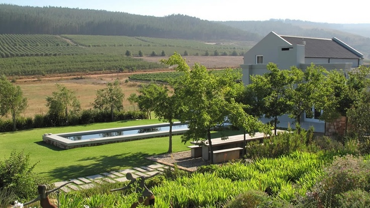 Wine Tasting in Elgin - South Africa | South Hill Wine Estate