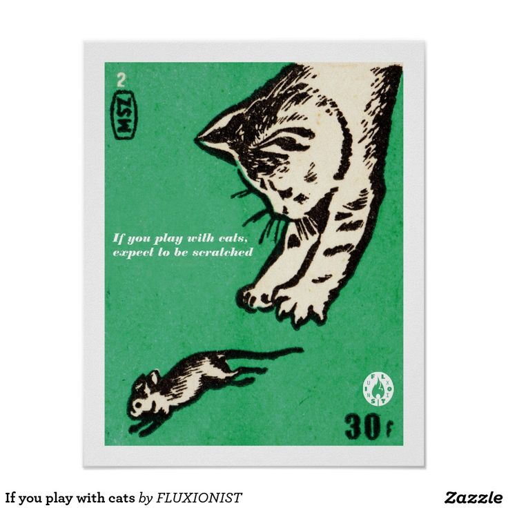 """If you play with cats, expect to be scratched"" poster - $12.95 Made by Zazzle Art / Design: Fluxionist"