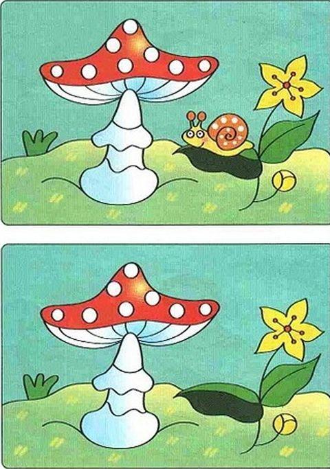 картинки для детей найди отличия (14) (480x683, 783Kb)