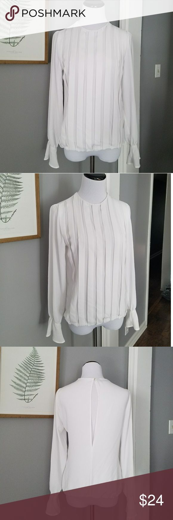 Zara White Pleated Open Back Blouse All white blouse with long sleeves with ruffle shape at wrists. Pleated in front. Open Back. Excellent condition. Perfect for looking polished at a holiday party. Zara Tops Blouses
