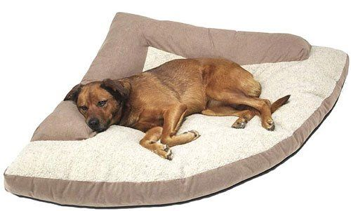 Best 25 heated dog bed ideas on pinterest warm dog for Kitty corner bed ideas