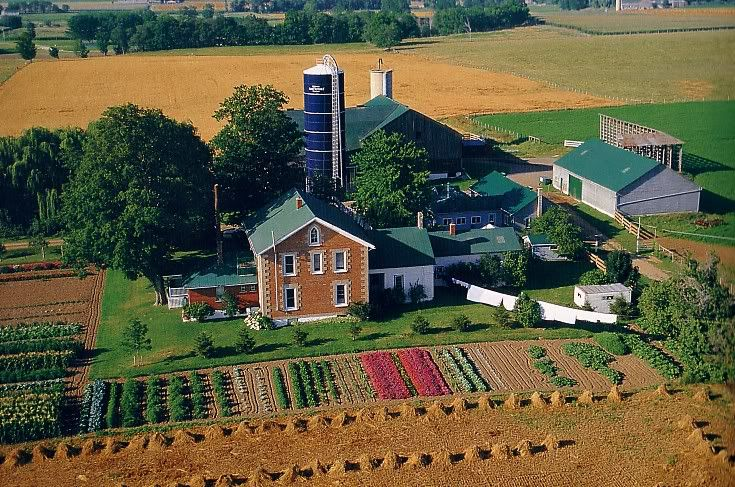 lovely Mennonite farm in Kitchener/Waterloo region, Ontario, Canada