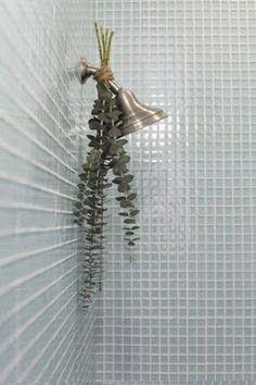 Mentaal Spa Lidice-Ba: Banho de eucalipto #mentalspa #spamental #mentaalspa #lidiceba