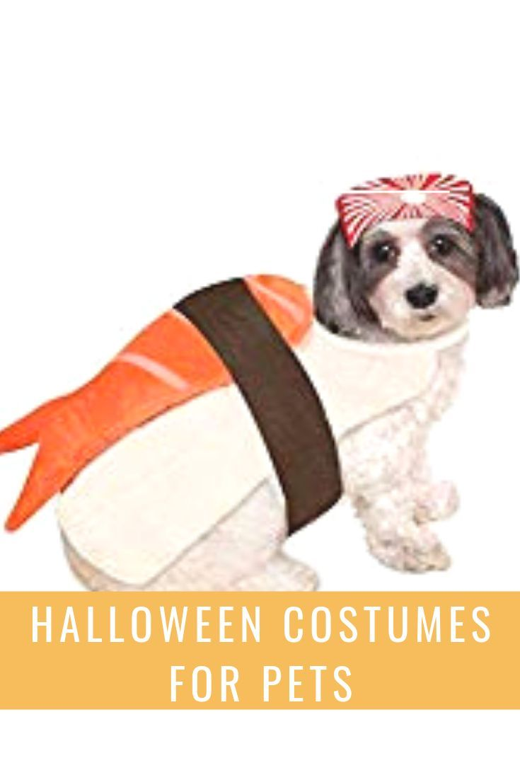 This Post Features Over 50 Ideas For Pet Costumes Great Costume