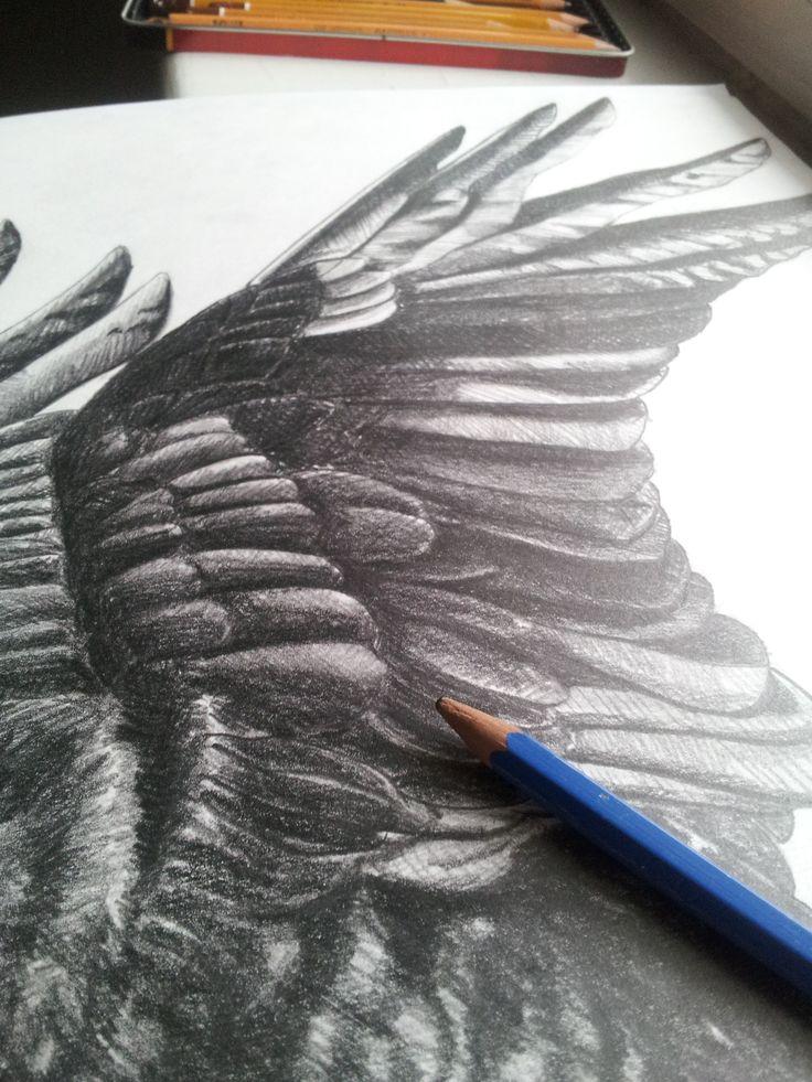 The Crow sketch by Meri Malmi