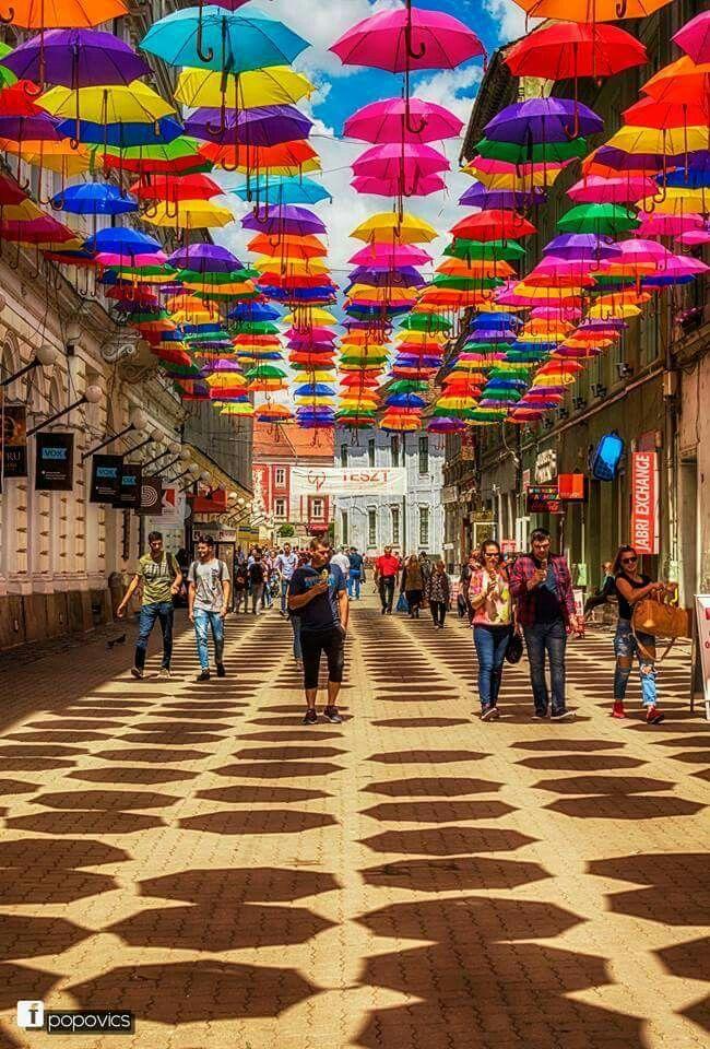 Timisoara - strada Alba Iulia si umbrelele ei colorate.  foto Alex Popovics