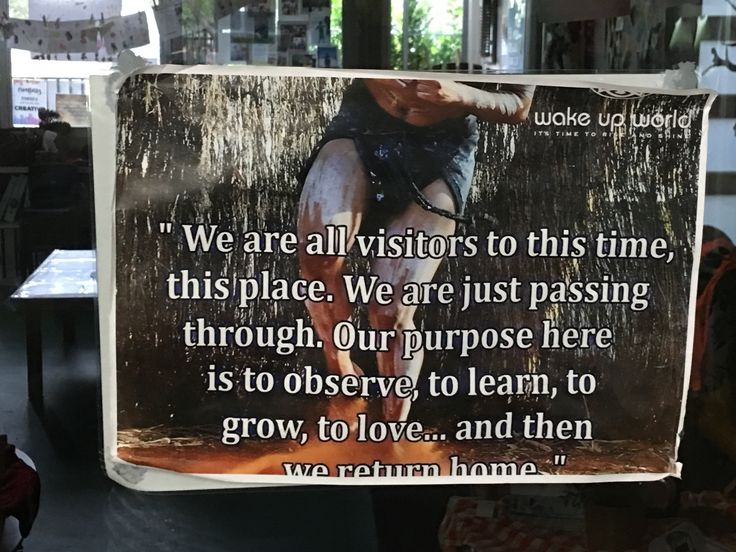 A great reminder at Explore & Develop Narraweena encouraging us all to be custodians of the land.