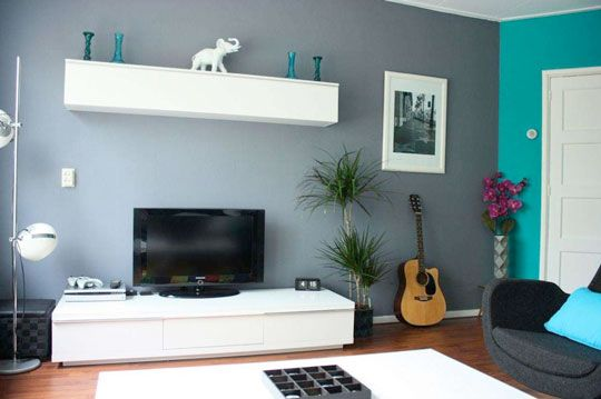 Livingroom wall color (not the turquiose)  Would you rent something with this blue grey wall color?