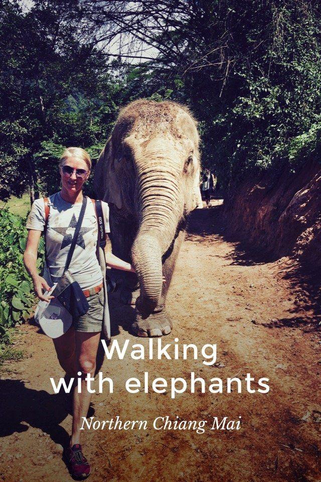 Allison Foat's (@CapeTownDiva) Story on Steller