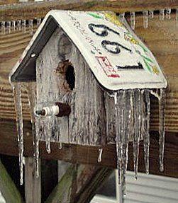 """Bird House with a """"tin"""" roof.  Good idea."""