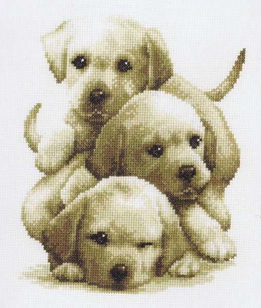 Three puppies at play in the popular sepia.
