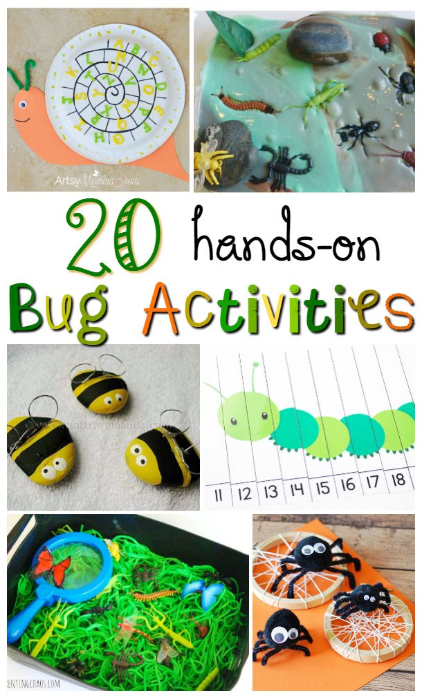 Awesome hands on bug activities for kids! So many fun crafts and activities for any spring time unit!