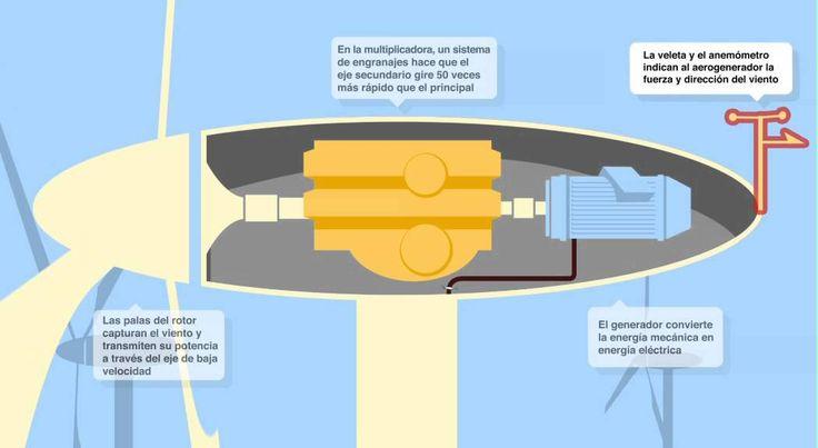 Los aerogeneradores componen los parques eólicos y son los encargados de generar electricidad con la utilización de la fuerza del viento. Este vídeo muestra con detalle los componentes  un aerogenerador y su funcionamiento.  Más información sobre los aerogeneradores en el siguiente enlace: http://www.endesaeduca.com/Endesa_educa/recursos-interactivos/produccion-de-electricidad/xiii.-las-centrales-eolicas