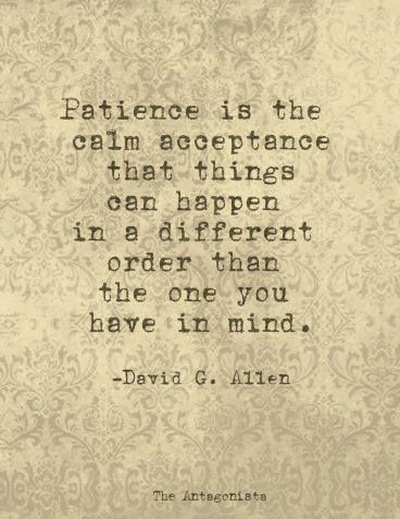 """""""Patience is the calm acceptance that things can happen in a different order than the one you have in mind."""" - David G. Allen."""