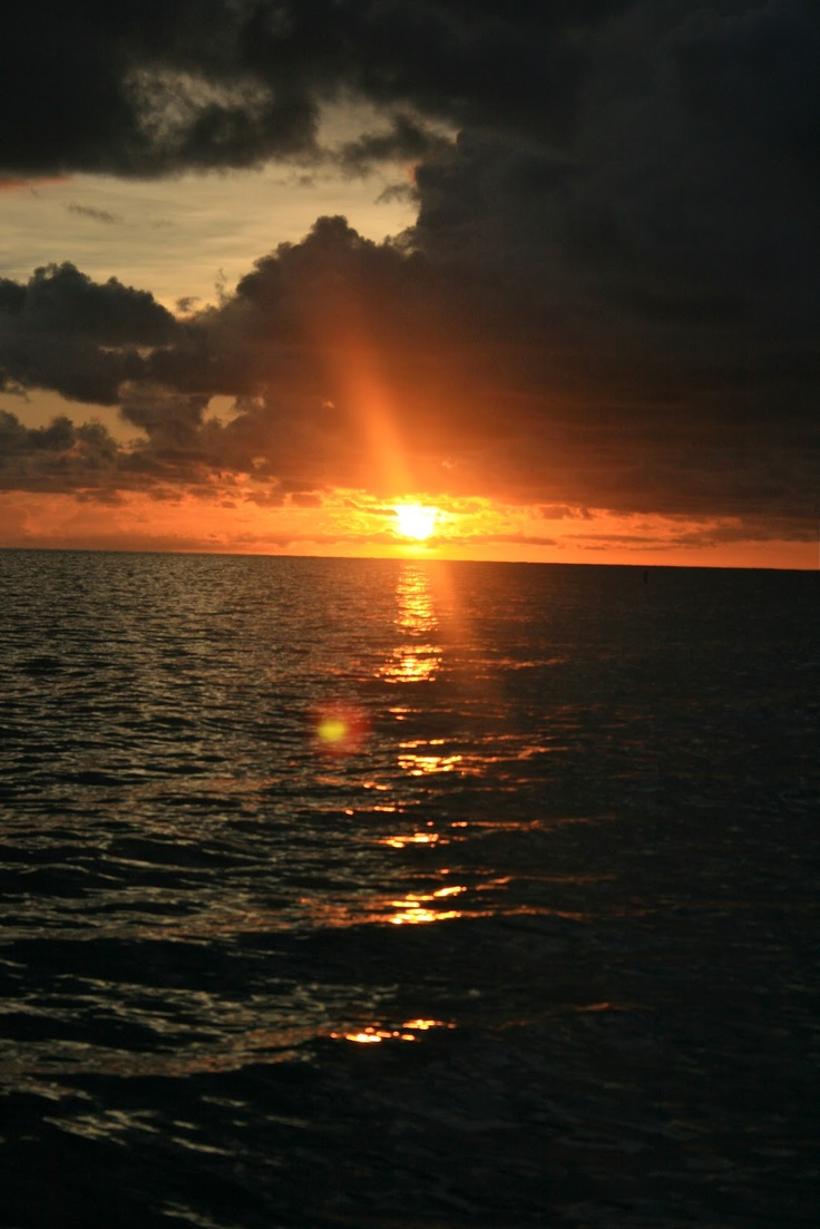 que sara sara: Captiva-ted. Captiva Island, FL