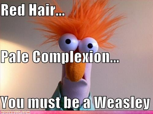 Does that mean I'm a Weasley??? Am I...adopted???WHERE IS MY LETTER TO HOGWARTS?!?!??!?!?!?!?!?!