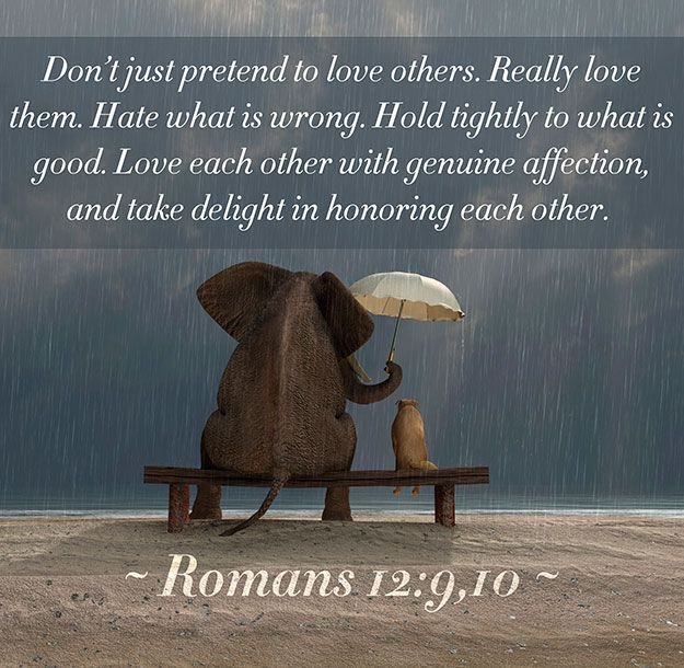 Romans 12:9-10 (9) Let love be without dissimulation. Abhor that which is evil; cleave to that which is good. (10) Be kindly affectioned one...