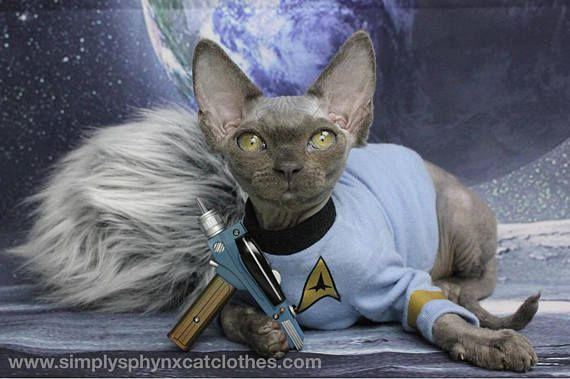 New Design Sphynx Cat Clothes Cat Trek Shirt Dog Costume Costumes For Pets Spock Shirt For Pets By Simplysphynx Sphynx Cat Clothes Pet Costumes Kittens Cutest