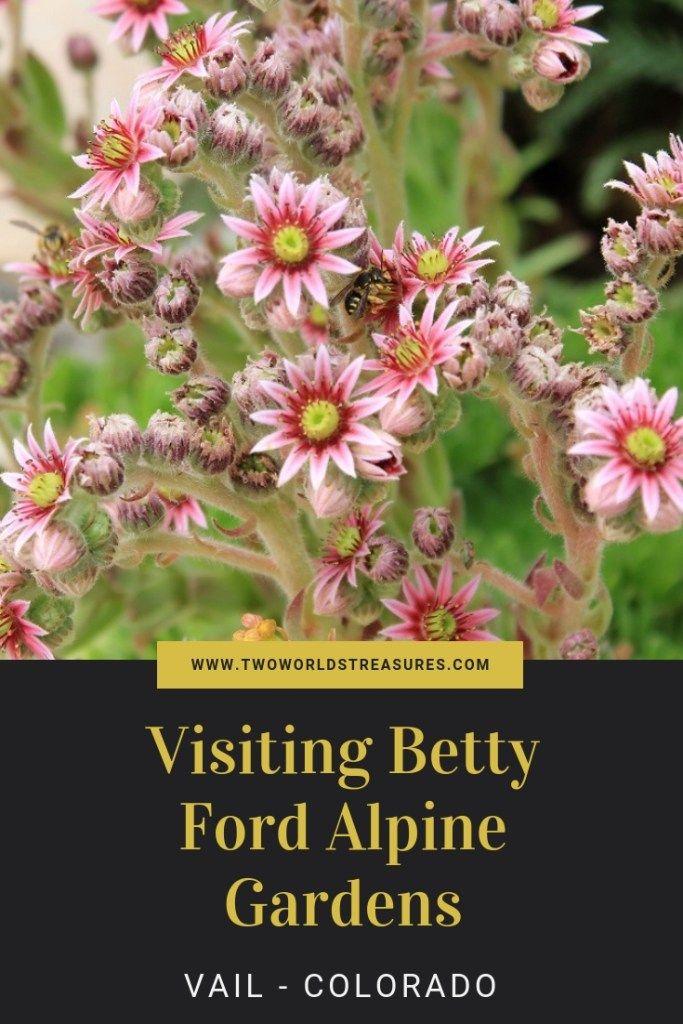 8664a27592d1644c5ae9b214df8e7053 - Denver Botanic Gardens Plains Conservation Center