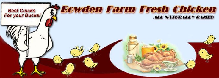 Bowden Farms - good, clean, healthy chickens.