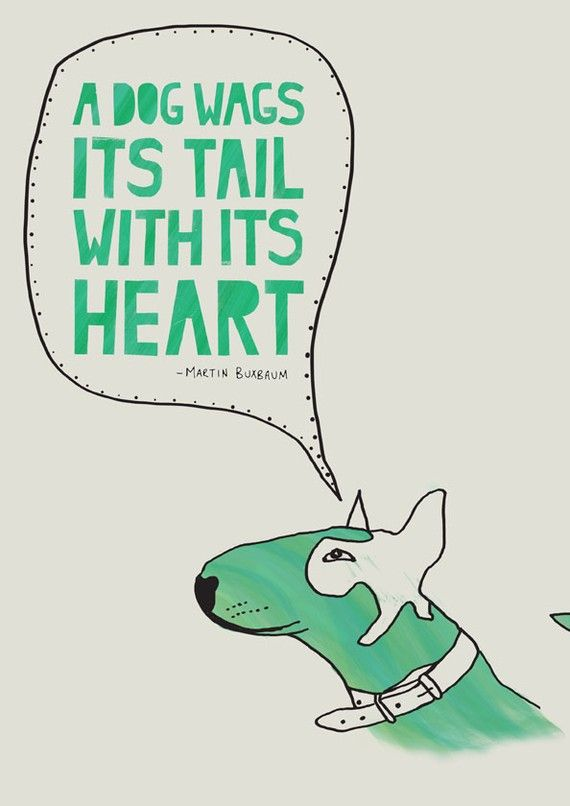 love this quote! #animals #pet. Unconditional love: http://www.pinterest.com/newdirectionsbh/unconditional-love/