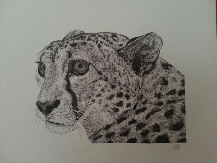 Cheetah stippling.