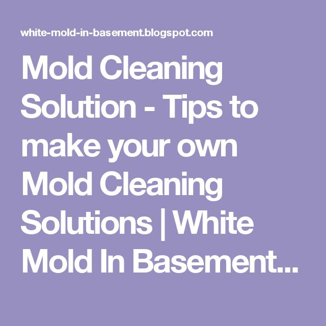 mold cleaning solutions white mold in basement white mold removal