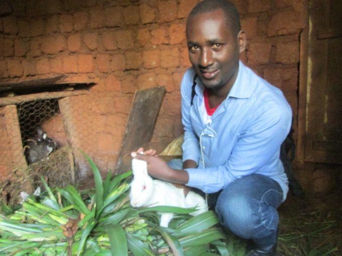 Pourquoi le choix de l'élevage de lapins