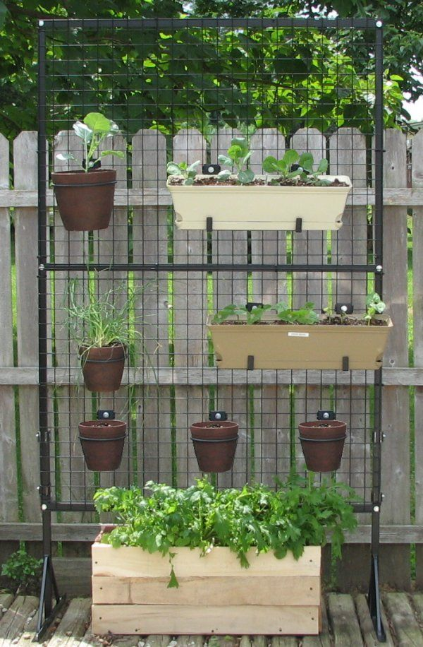 Vertical Gardening Supply: Our Vertical Gardening Products Allow You To  Grow Your Own Fresh Vegetables