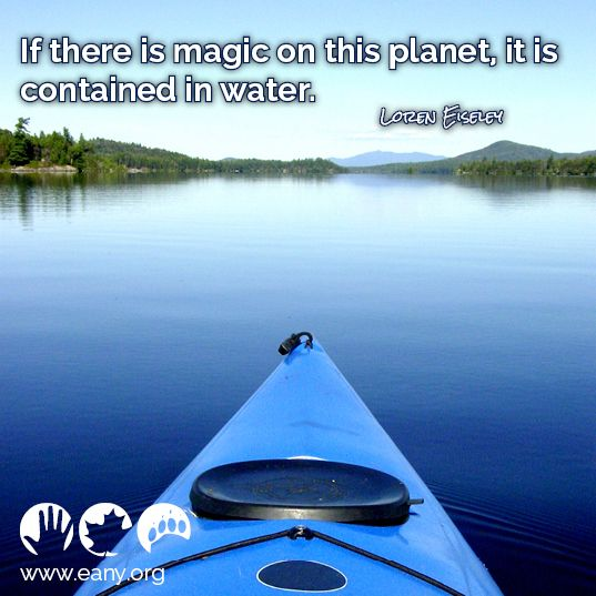 """""""if there is magic on this planet, it is contained in water""""  