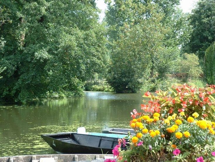 Fonds d 39 cran nature fleuves rivi res torrents venise verte rivieres pinterest nature - Initiatives fleurs et nature ...