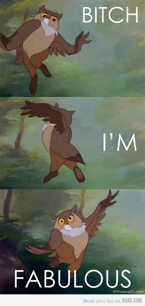 Bitch I'm fabulous. Friend Owl from Disney's Bambi. Yes owl, yes you are.