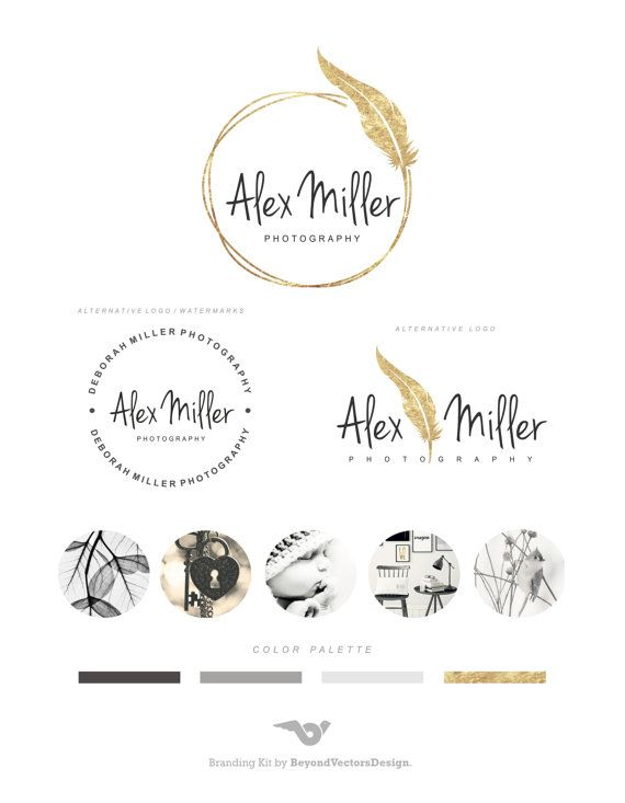 Golden Feather logo  Premade Logo Set  Photography by BVLogoDesign