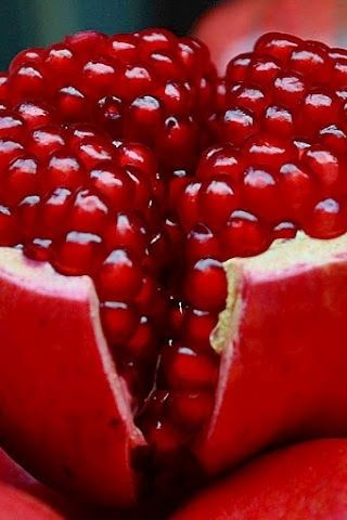 How can pomegranates be so intensely delicious AND so strikingly beautiful? I am so obsessed.