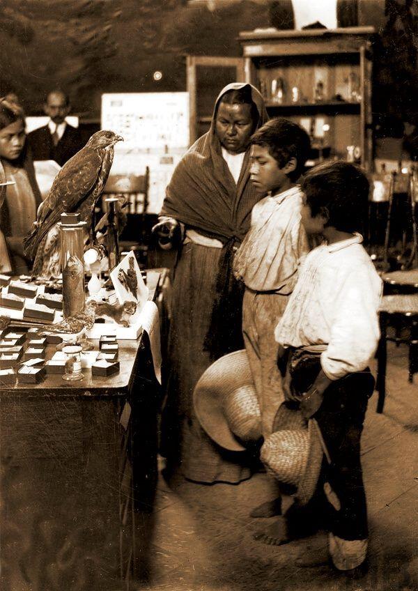 Visitantes al Museo de Historia Natural - 1903