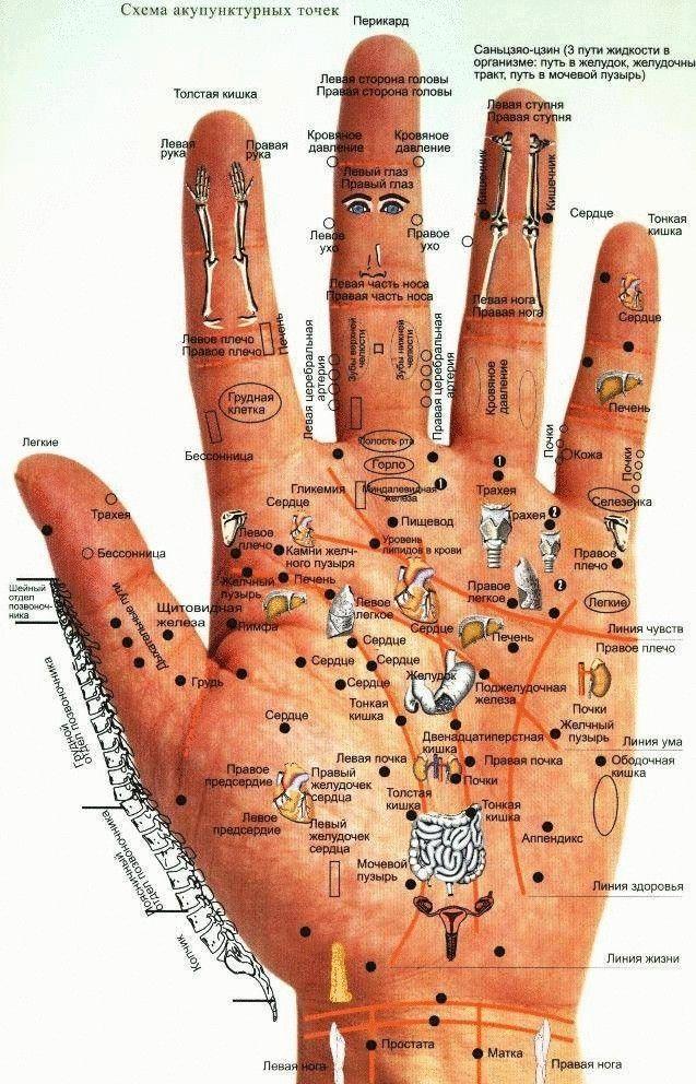 Древние врачеватели знали методы оздоровления, применяя воздействие (давление и массаж) на биологически активные точки тела. Причем для лечения им не требовалось ни оборудование, ни медикаменты. Все н...