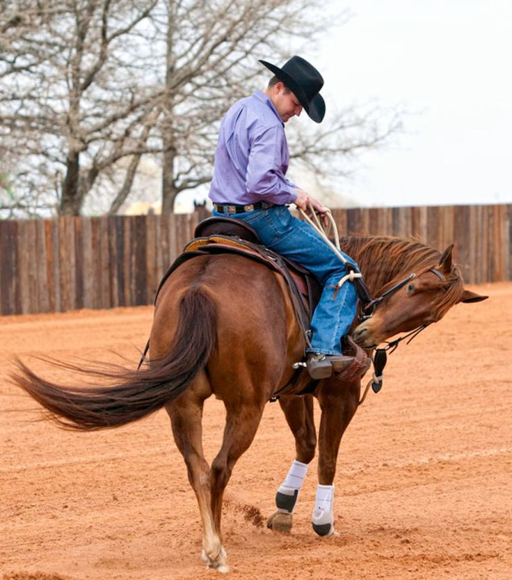 No Bucking Broncos! | Horse & Rider