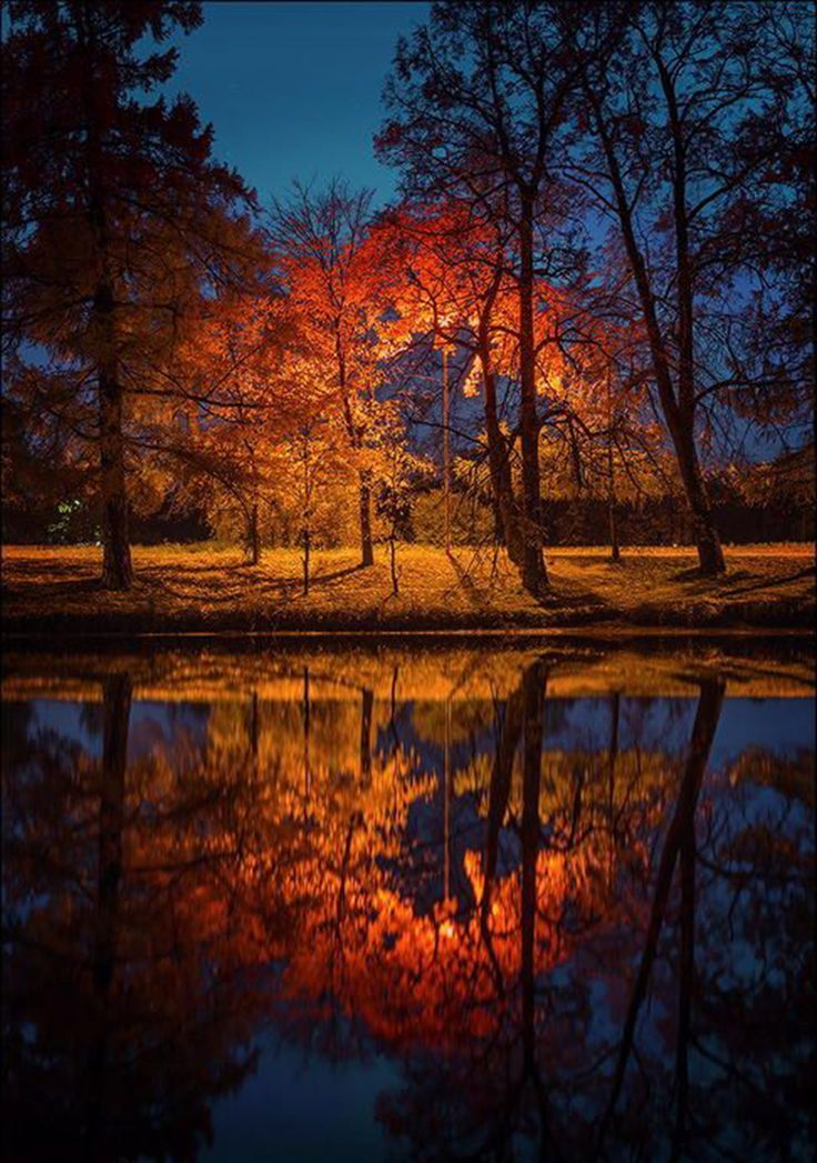 17 best images about reflection and illusion photograph on - Pics of fall scenes ...