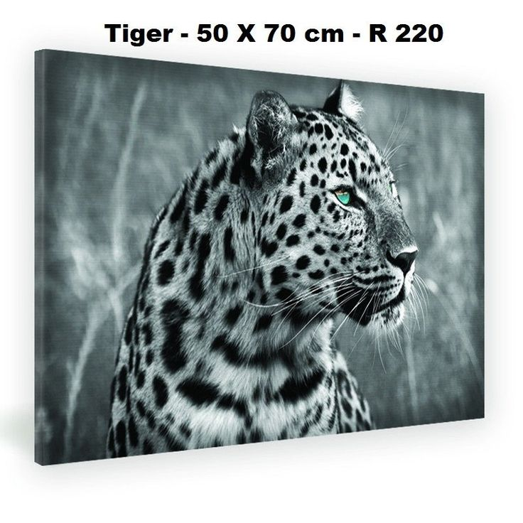 State of the art decoration canvas - Tiger