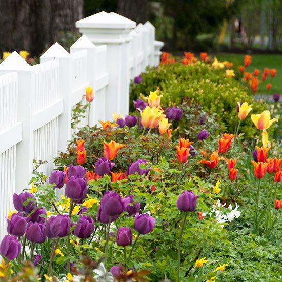 Starting a new garden? Our guide to gardening basics is here to help: http://www.bhg.com/gardening/yard/garden-care/gardening-basics/?socsrc=bhgpin050613gardeningbasics