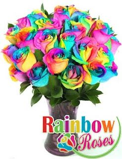 these rainbow roses are amazing!