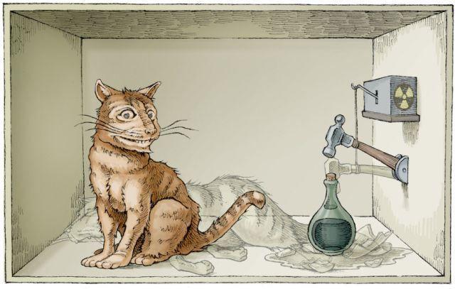 El Gato de Schrödinger #Video https://shar.es/1qJky1 #Ciencia #Física #MecánicaCuántica