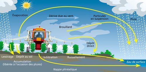 Les pesticides pollution des sols de l 39 air de l 39 eau et de l 39 alimentation agriculture peut - Nettoyeurs de sols et vapeur ...