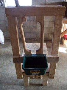 bldging a goat milking stand.  this would make things much easier