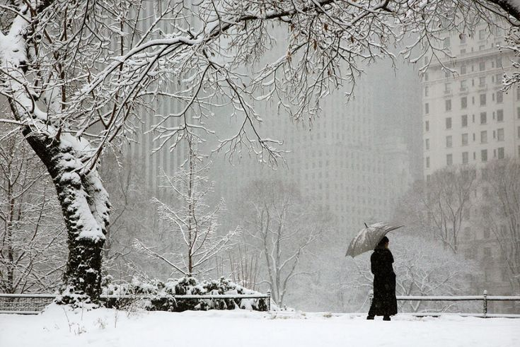 Christophe Jacrot, Lady snow, from series White New York