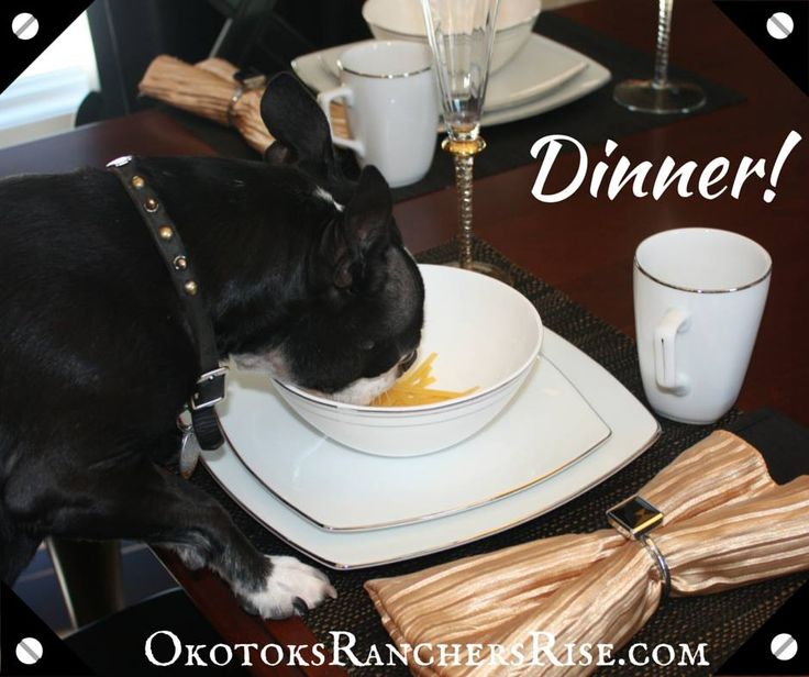 Finally some dinner! I have to say, the food is almost as amazing as the kitchens here at Ranchers' Rise in Okotoks. Almost. ~Love Mickey http://dmbox.pro/1NI6nyS