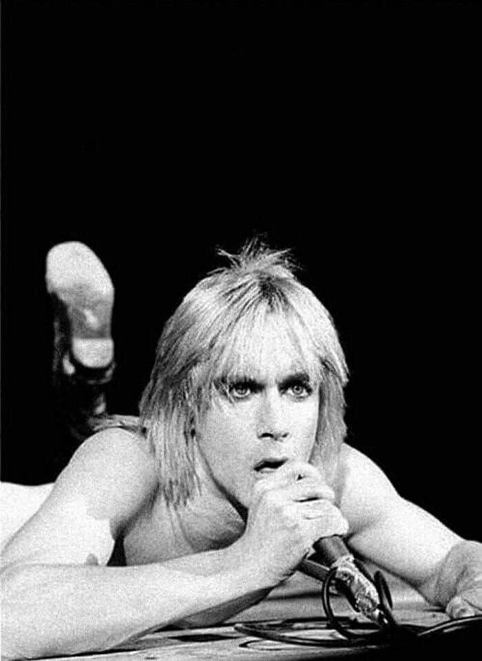 65 best IgGy images on Pinterest  Iggy pop Music and