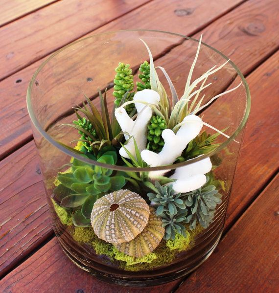 I would do this will real succulents. --- Artificial Succulent and Real Coral Terrarium in a Glass Cilinder