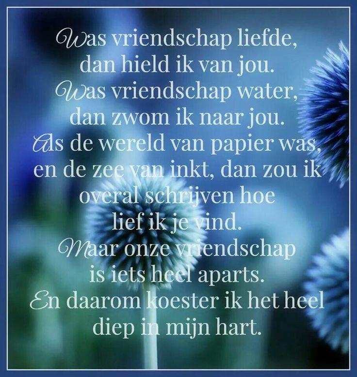 Nederlandse Citaten Over Boeken : Beste ideeën over citaten lezen op pinterest